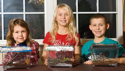 Live Christmas Tree Farms