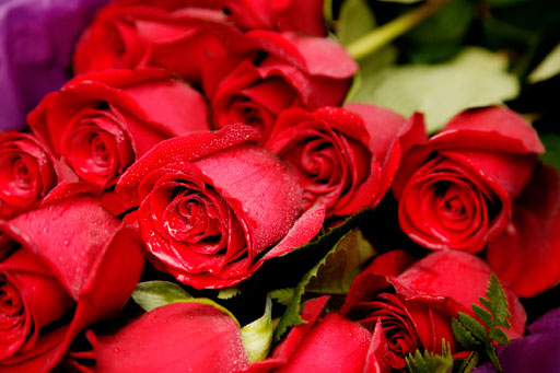 Valentine's Day flowers: Tips to get the most for your money