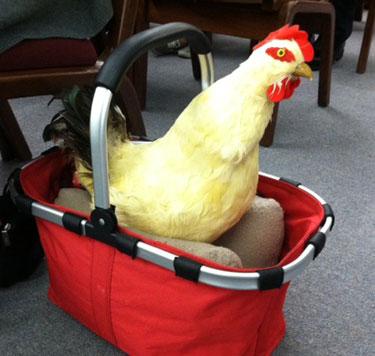 Chicken debate heats up in Annapolis