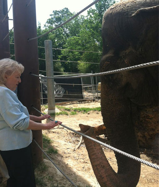 Betty White draws a wild crowd at the National Zoo