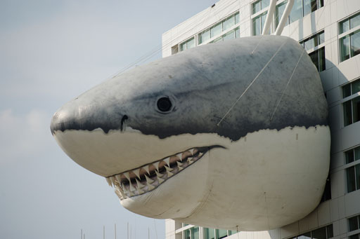 Vote on 'Shark Week' mural for Discovery's Silver Spring building