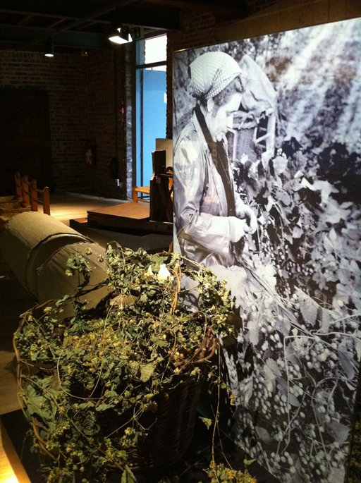 A must-visit for beer fans: Belgium's Hop Museum