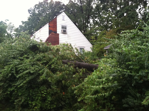 Storm chops chimney off Arlington home