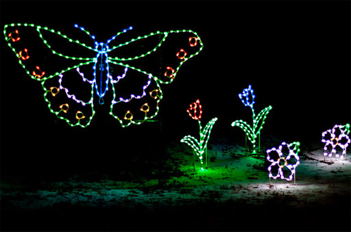 WTOP takes you behind the scenes at ZooLights