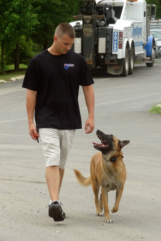 Va. dog trainer to appear on reality series 'Alpha Dogs'
