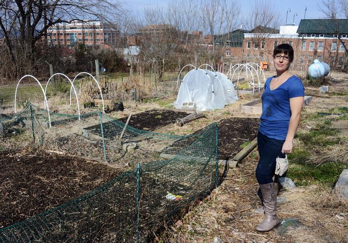 Urban gardeners in Frederick need new space