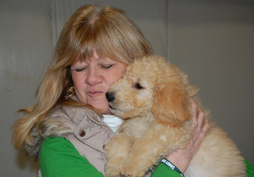 Sandy Hook teacher: My Goldendoodle reminds me there is good in the world