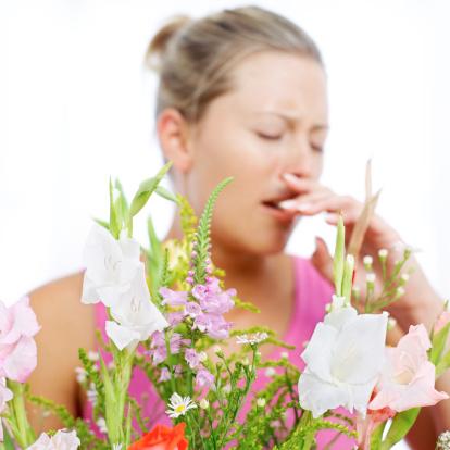 Help yourself endure this allergy season