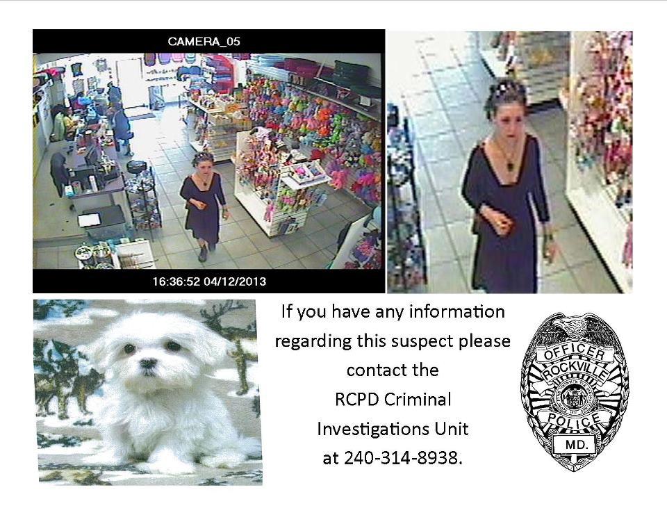 Alleged Rockville puppy thief caught on tape (Video)
