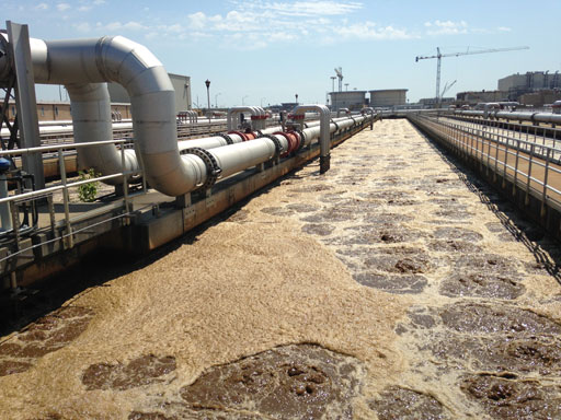 How Blue Plains treats wastewater