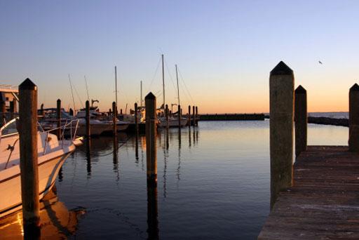 Chesapeake Bay coming back into balance
