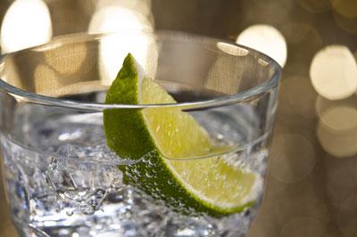 Fungus threatens future of gin and tonics