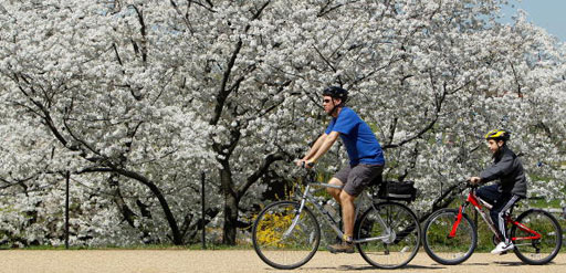 Local hotels offer city sites by way of two wheels