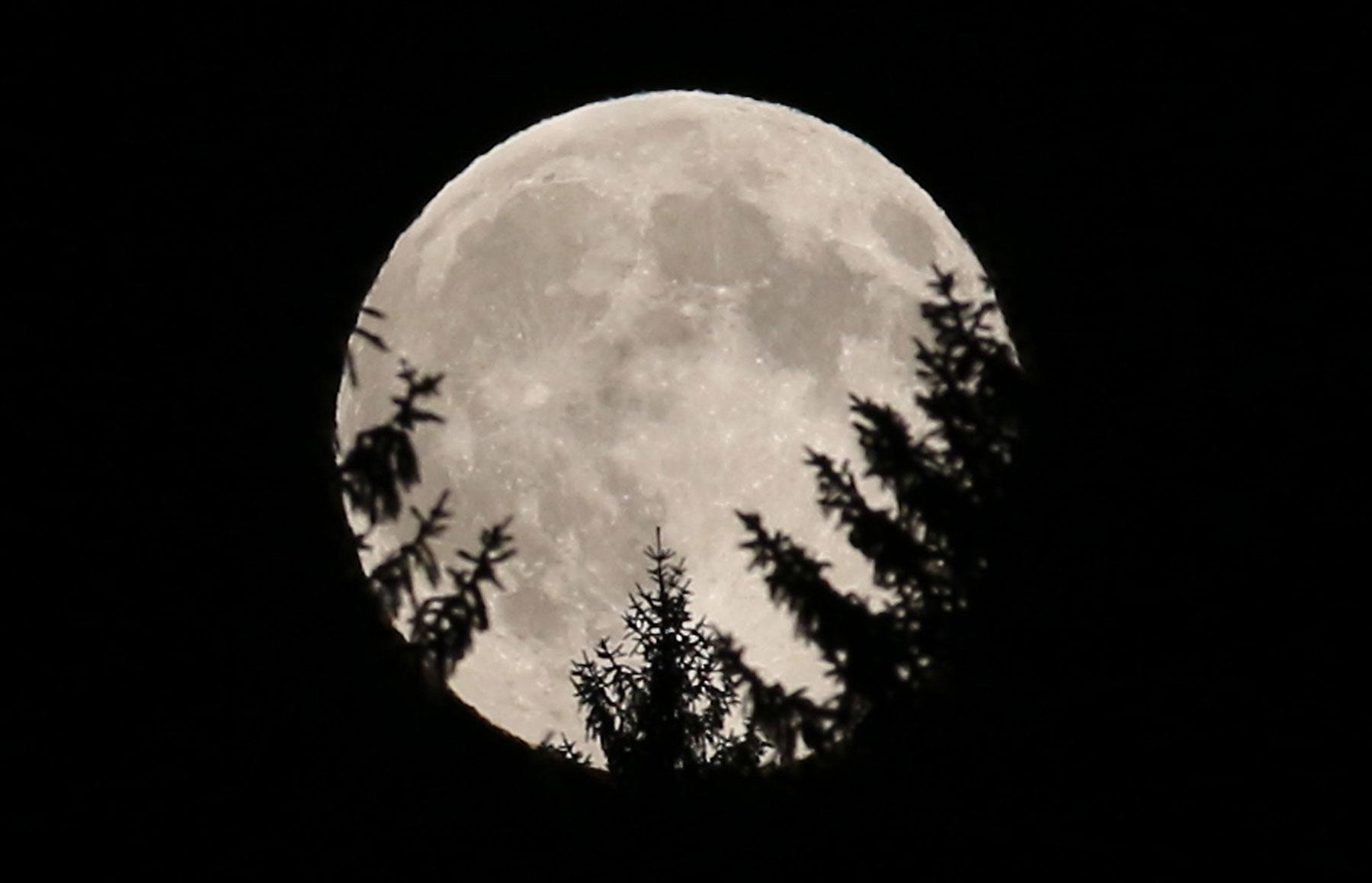 Saturday is 'International Observe the Moon Night'