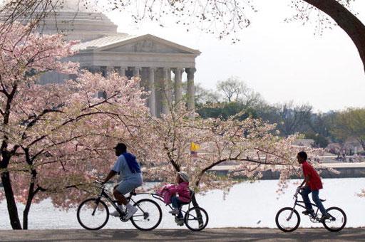 Mayor Vincent Gray signs legislation for new bike laws