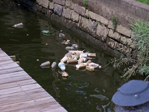 D.C. studies ban on styrofoam