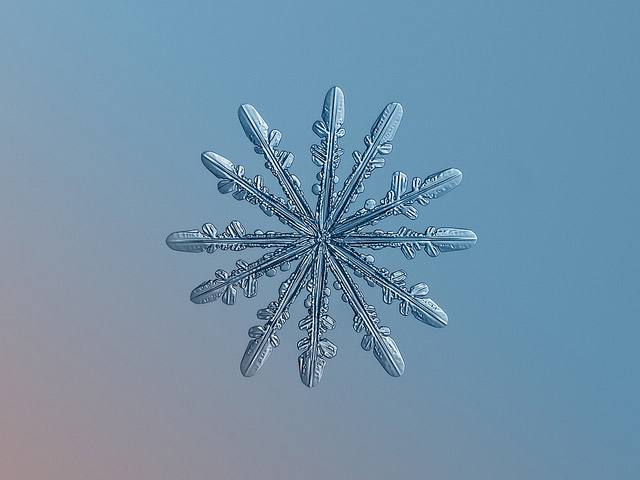 Snowflake photography brings you up close with ice crystals