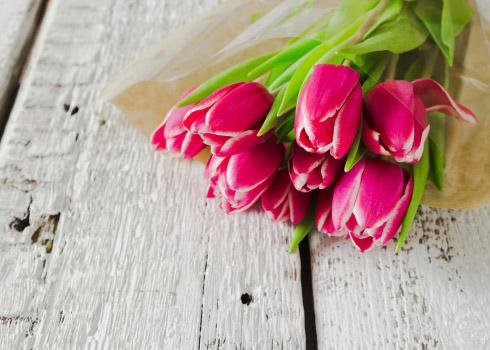 Garden plot: Frozen limbs and Valentine's Day