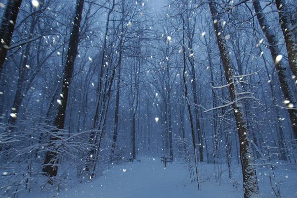 How rare are March snows?