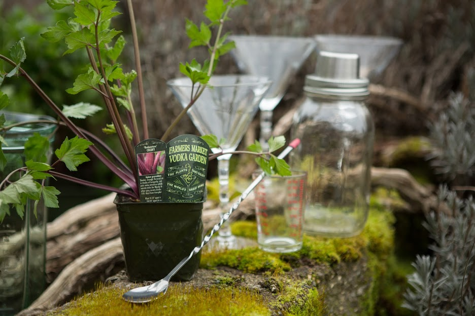 Botany and booze: Grow the perfect cocktail garden