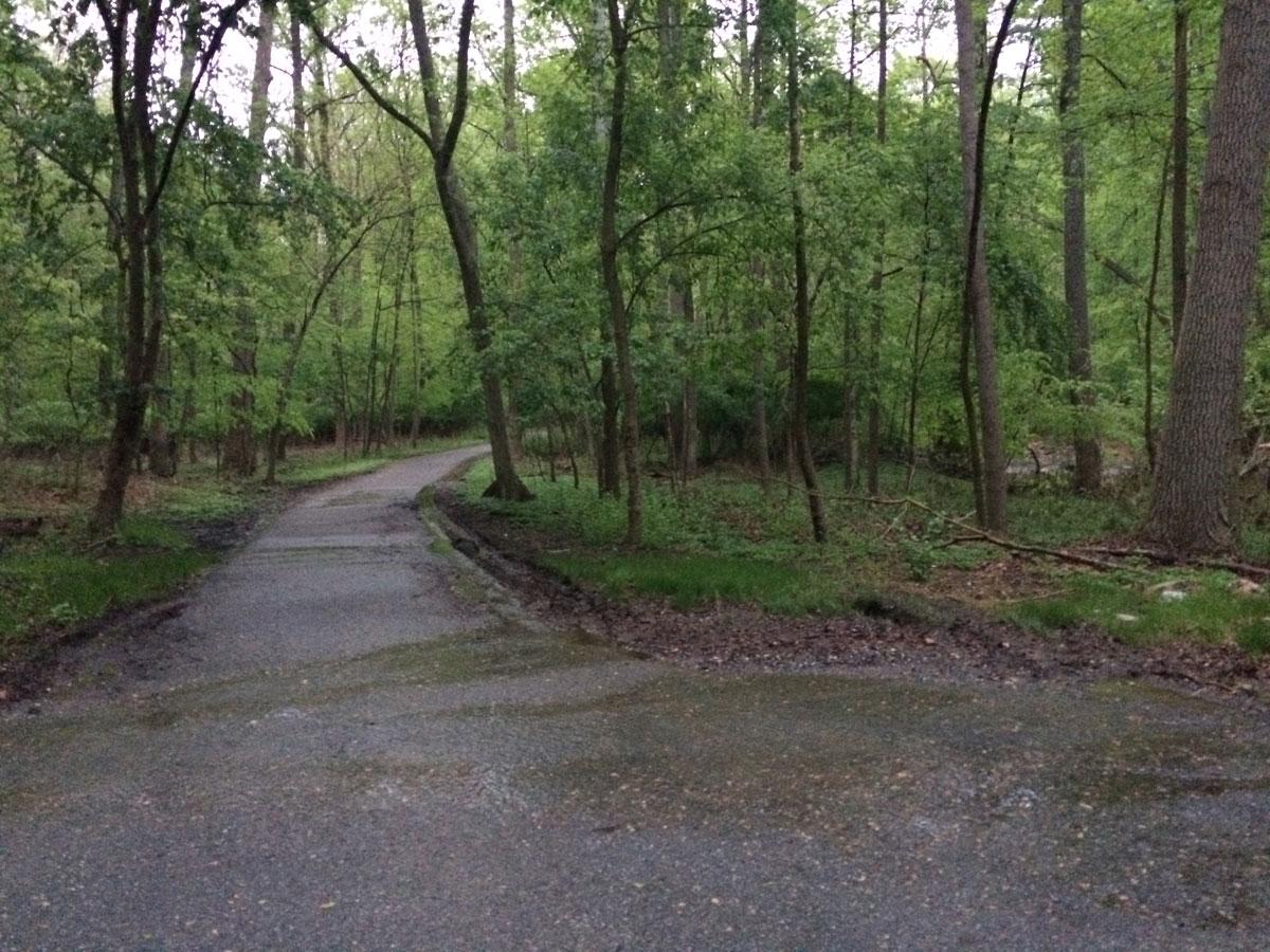 Woman raped on Northwest Branch Trail