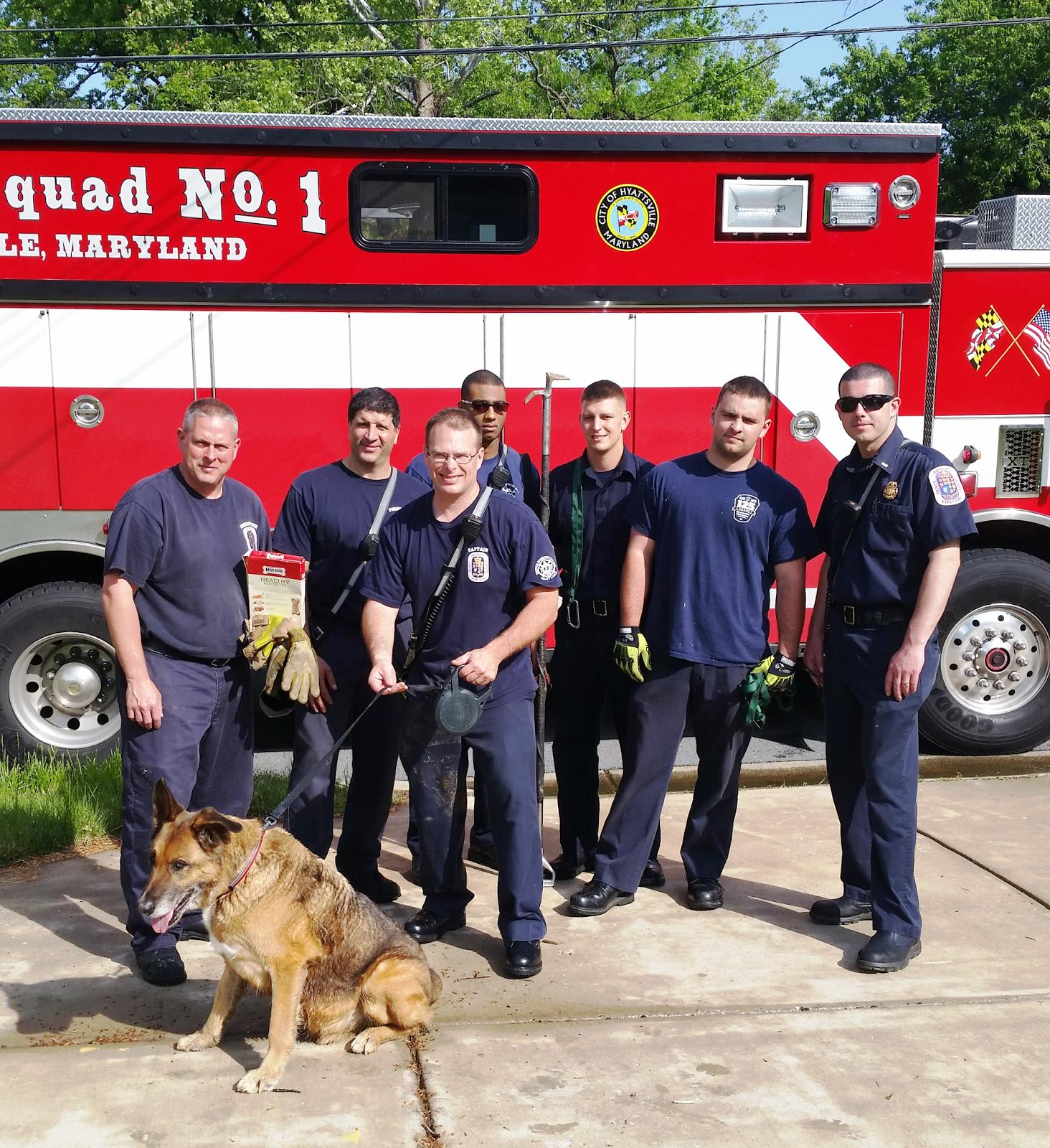 Prince George's fire crew rescues scared dog with help of biscuits
