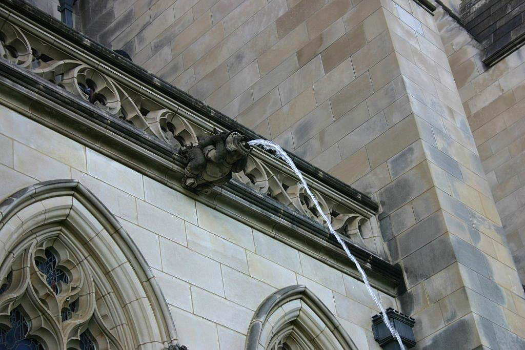 Cathedral tour spotlights gargoyles and grotesques up close