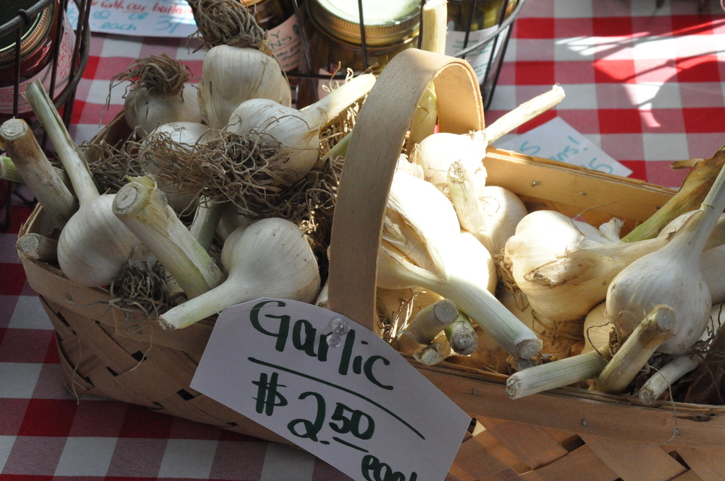 Cold weather looms: Get your garlic and pansies