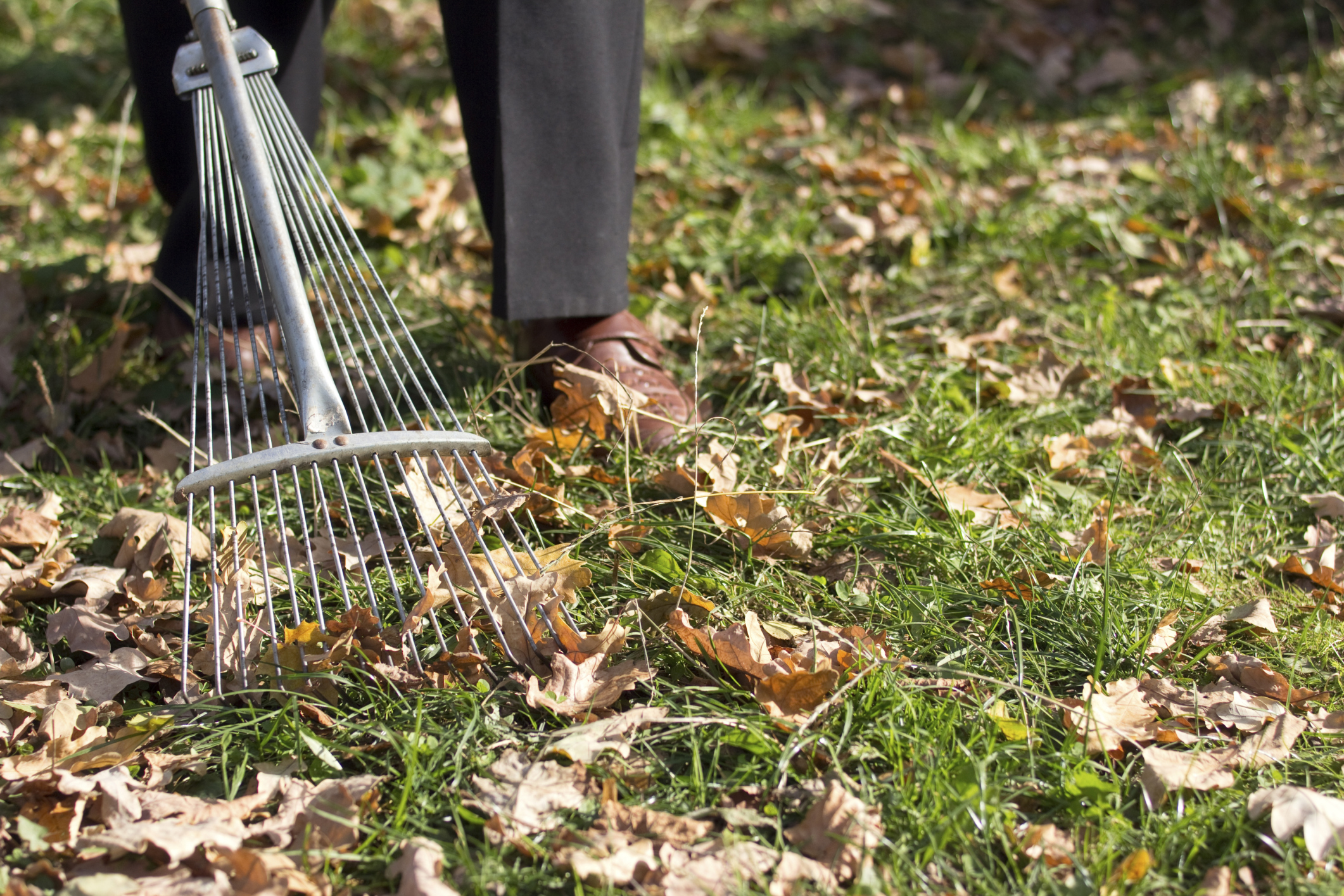 Raking safety tips from the Farmers' Almanac