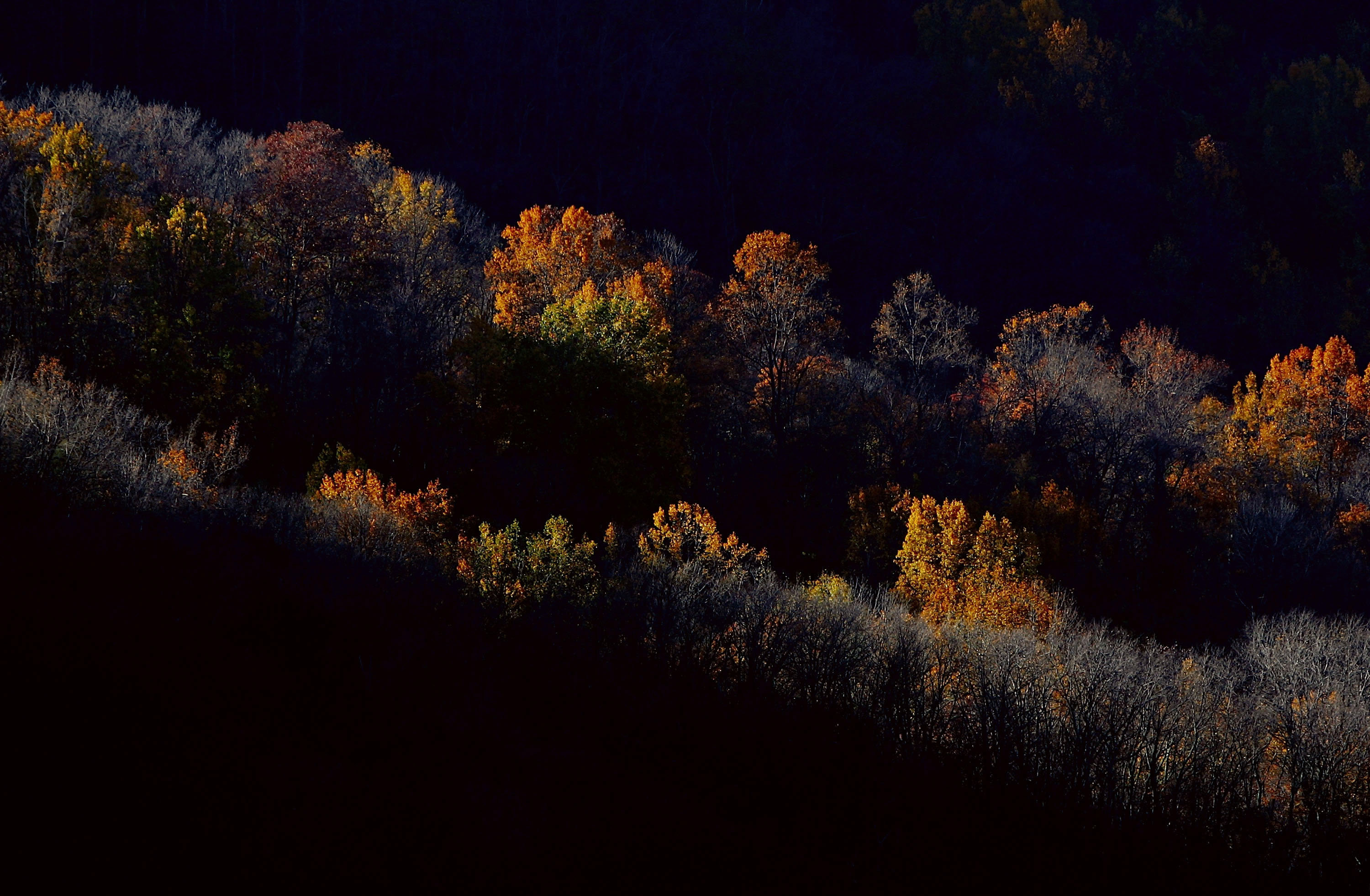The best times, places to spot changing leaves