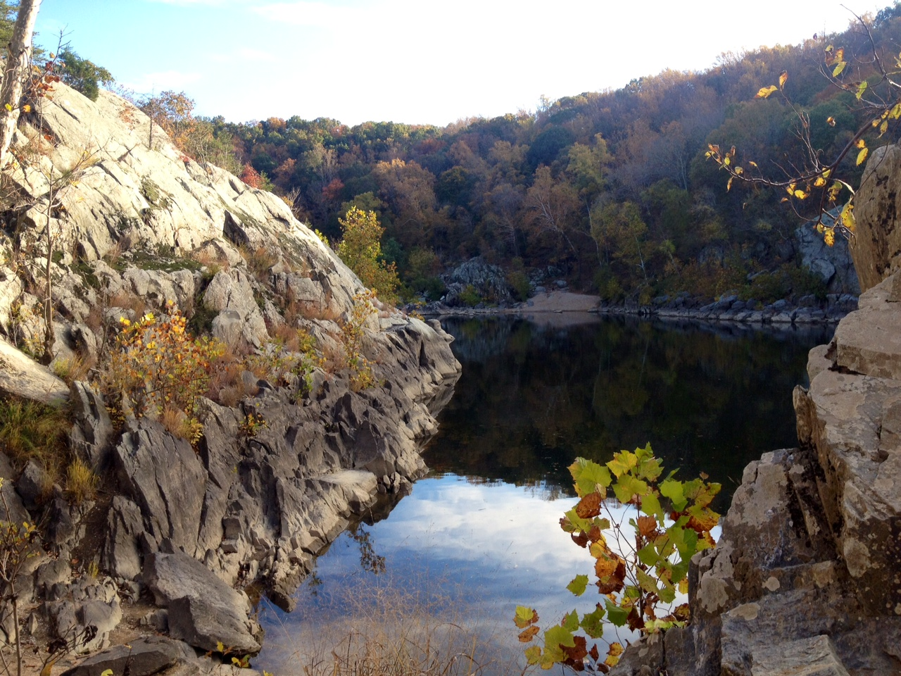 Group works to improve Potomac River's health