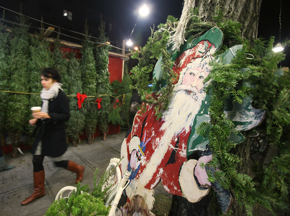 Garden Plot gift guide: Bat guano and tickets to a flower show