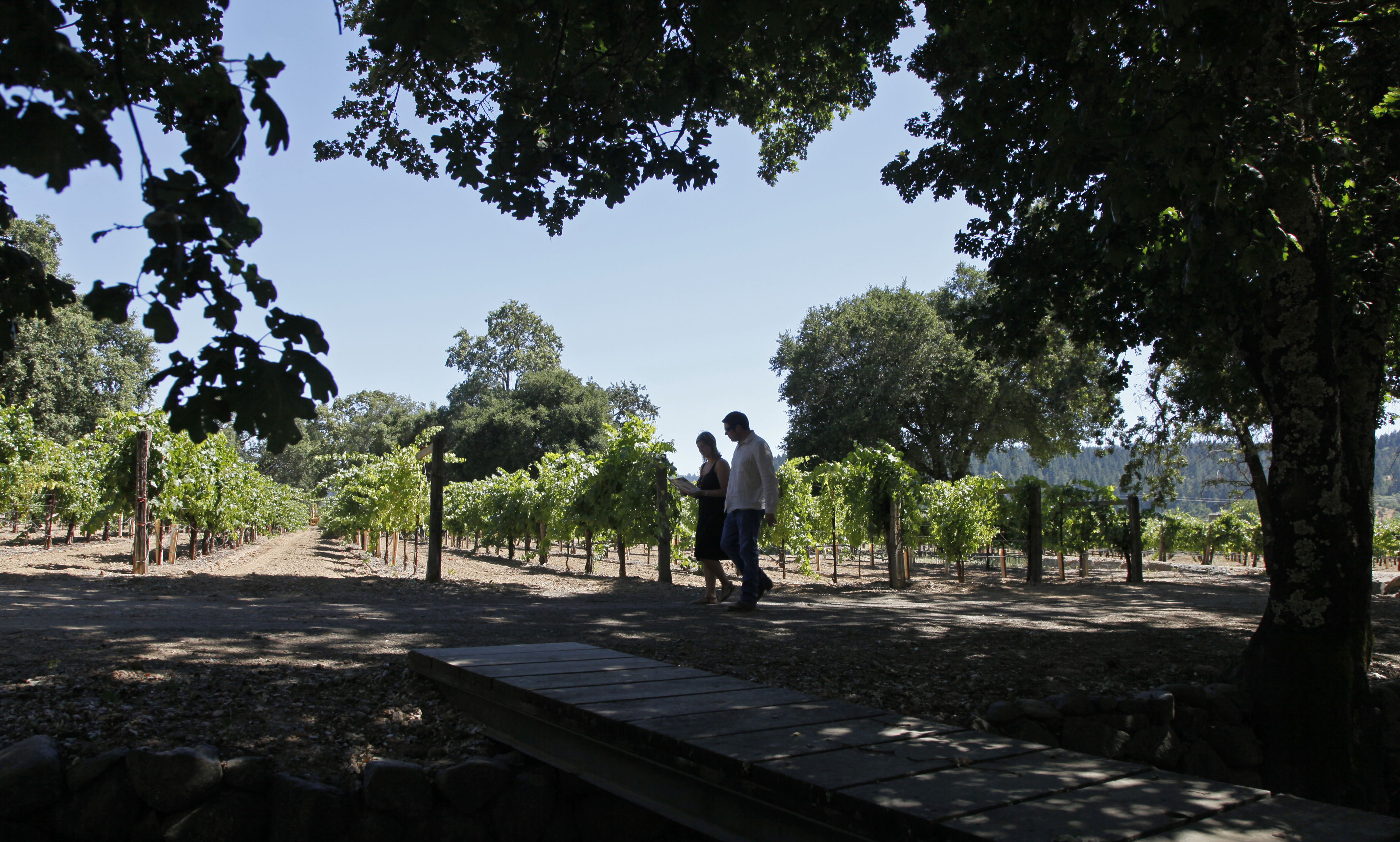 Passport to wine country: Sonoma Valley, part one