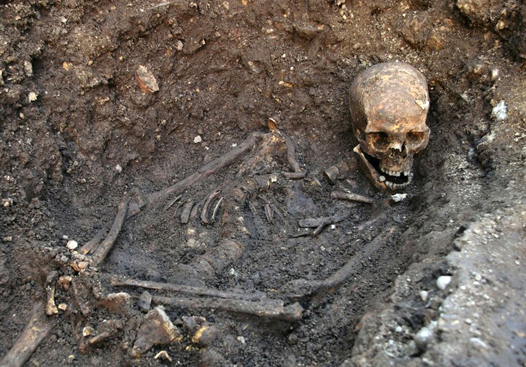 """FILE- This is an undated file photo released by the University of Leicester, England, showing the remains human skeleton found underneath a car park in Leicester, England, September 2012, which has been declared """"beyond reasonable doubt"""" to be the long lost remains of England's King Richard III, missing for 500 years. According to research published Tuesday Dec. 2, 2014, in the Nature Communications journal, scientists compared the skeleton's DNA to samples from living relatives but found no matches, a discovery that could throw the nobility of some royal descendants into question, including Henry V, Henry VI and the entire Tudor royal dynasty. But Kevin Schurer, pro vice-chancellor of the University of Leicester, said England's current royal family does not claim Richard III as a relative and shouldn't be worried about the legitimacy of their royal line. (AP Photo/University of Leicester, FILE)"""