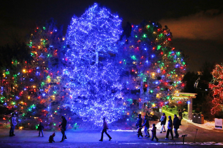 Genial 23, 2013 File Photo, People Take In The Elaborate Holiday Light Designs At  The Blossoms Of Light On The Grounds Of The Denver Botanic Gardens, Which  Logged ...
