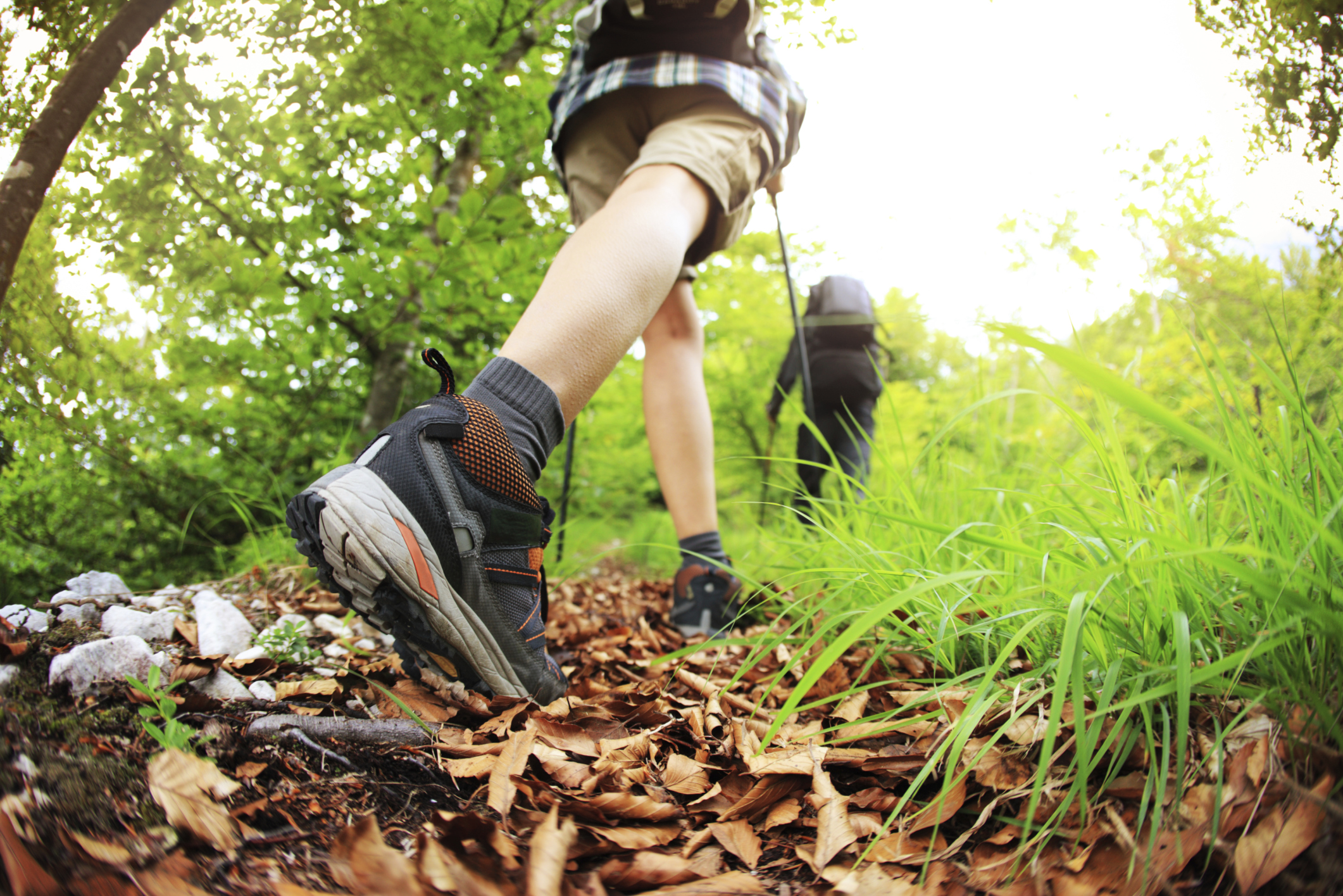Start the new year with a 'First Day' hike