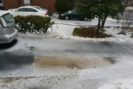 snow 3/5/15