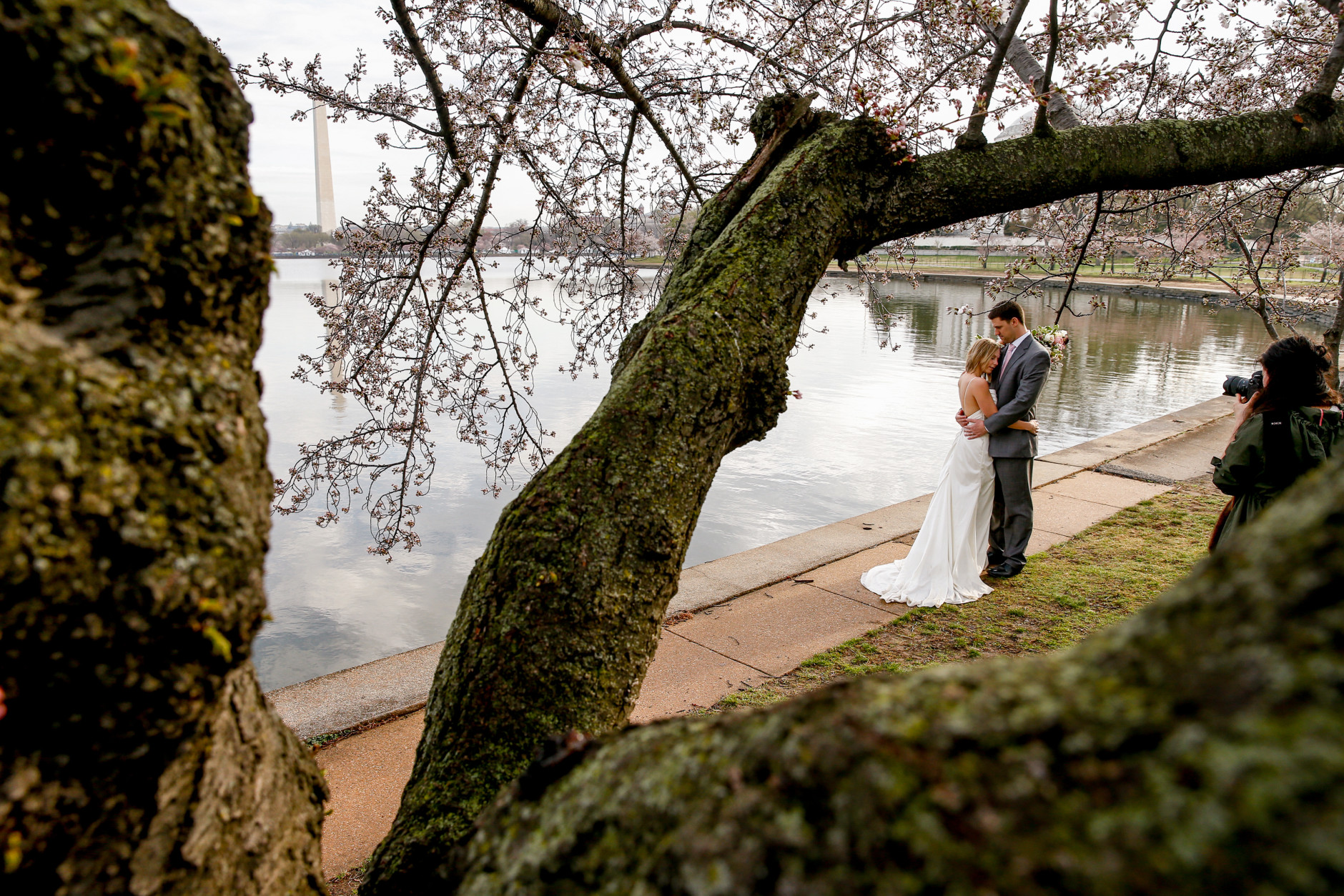 With the Washington Monument in the background, left, Rebekah Murray of Leesburg, Va., right, photographs Luke and Carolyn Woods of Silver Spring, Md., among the cherry blossoms trees along the Tidal Basin in Washington, Tuesday, April 7, 2015. Luke and Carolyn were married 4 years ago and are retaking their wedding photos. Officials are calling for a peak bloom period from April 11-14th. (AP Photo/Andrew Harnik)