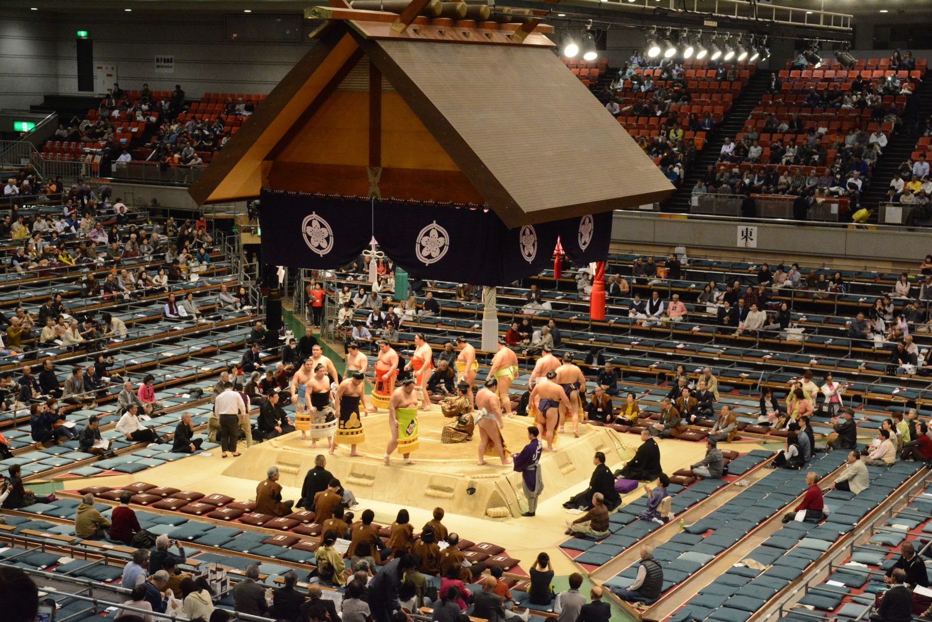 """""""Sumo combines so much of Japanese culture into just one sporting event. There's this ritual and these traditions, and these dances, and it's just really kind of a trip back in time. Just the energy of the crowd is so intense, you feel like you're really part of something,"""" says Laura Hayes.  (Courtesy Laura Hayes)"""