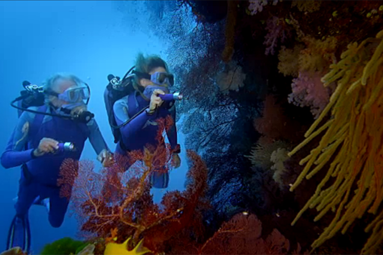 Cousteau presents 'Secret Ocean' at Smithsonian