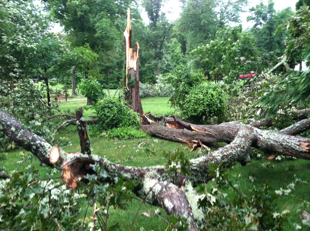 Two tornadoes damage homes, facilities in St. Mary's County