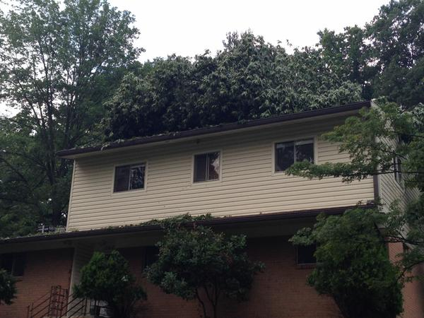 Thursday night's storm caused damage on Eastbourne Drive in Silver Spring: One tree uprooted, another on the roof of a house and debris everywhere. (WTOP/Jamie Forzato)