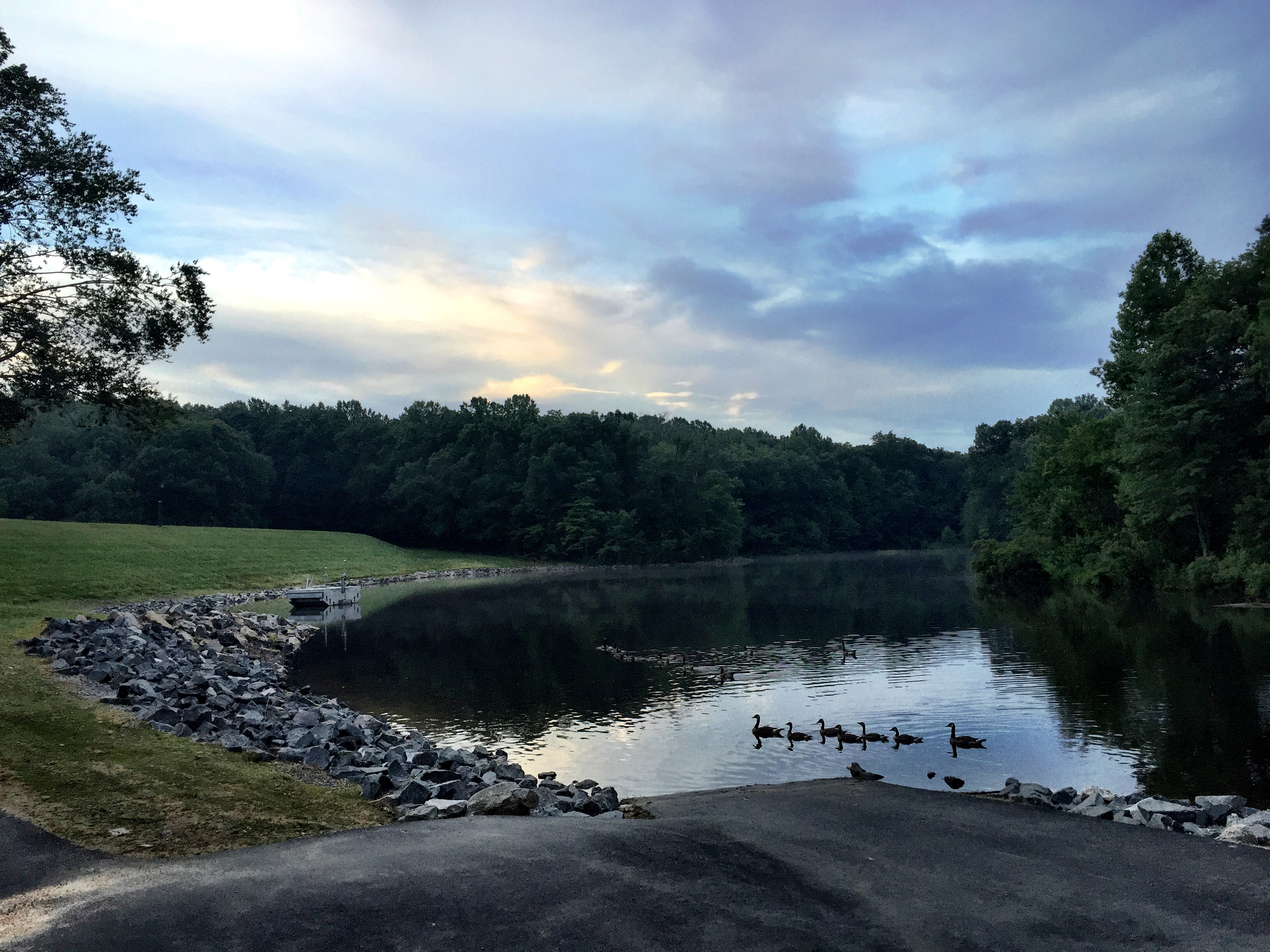 Body found floating in Va. lake ID'd as Fairfax woman