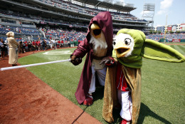 Washington Nationals mascots Screech and Little Screech wear Star Wards costumes as Luke Skywalker and Yoda, on Star Wars day before a baseball game against the Los Angeles Dodgers at Nationals Park, Sunday, July 19, 2015, in Washington. (AP Photo/Alex Brandon)