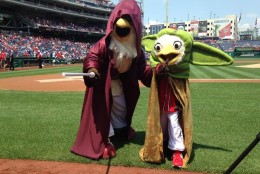 It wasn't just the Racing Presidents getting in on the costume action at Nats Park! (Courtesy Washington Nationals)