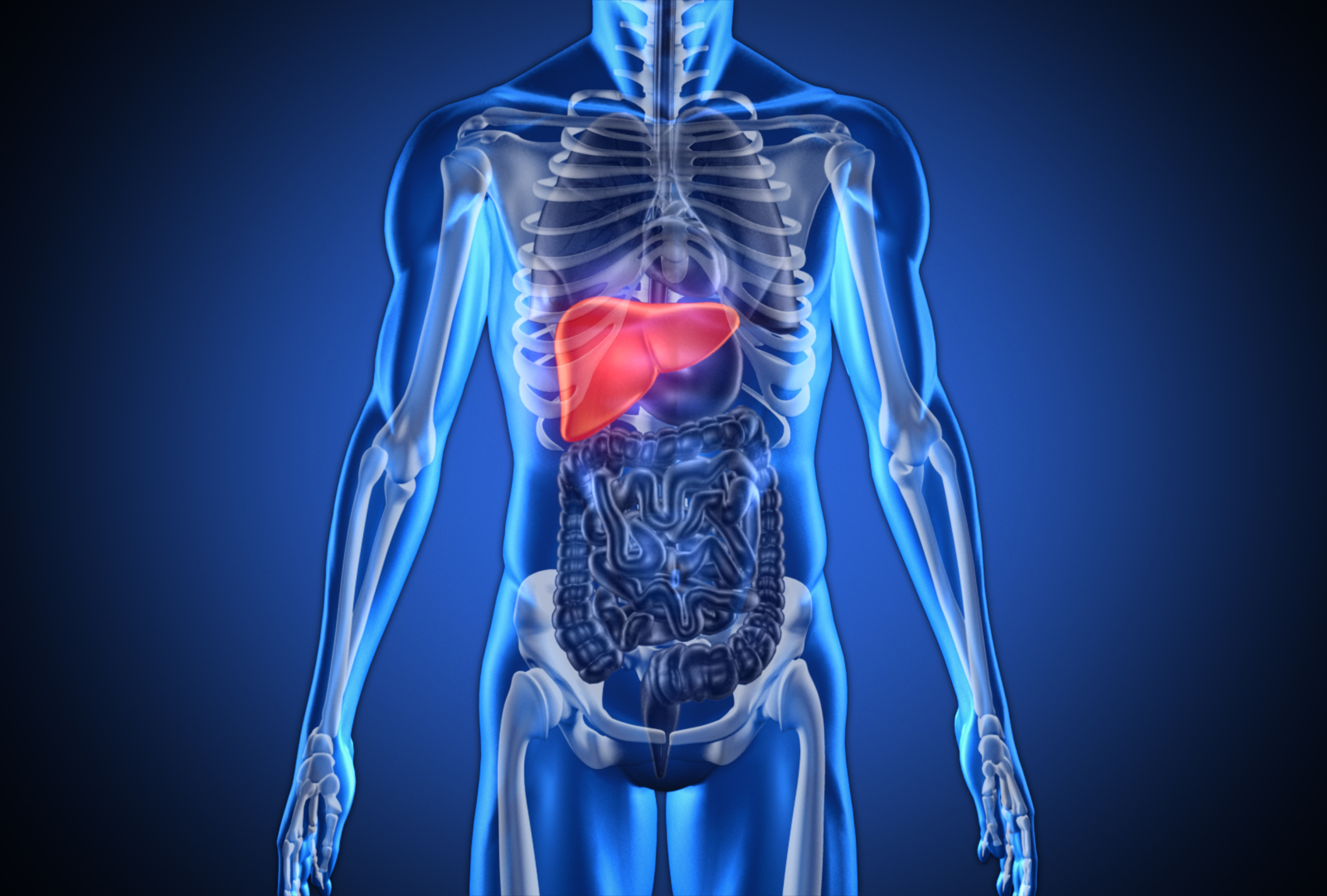 What is embolization and how is it used to treat liver for El interior del cuerpo humano