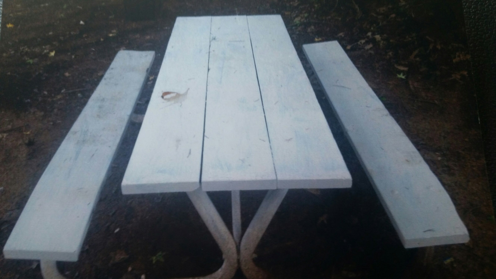 Charge dropped against veteran facing jail time for painting picnic table