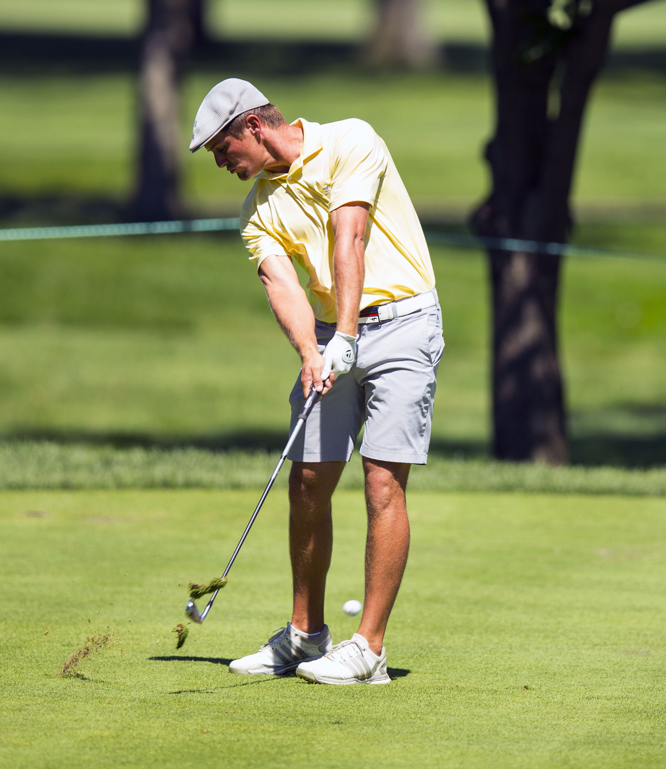 Consider, that amateur golf players by age groups