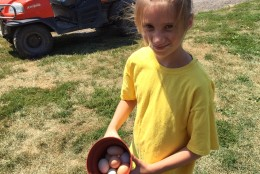 Luther's granddaughter, Rachel Zimmerman, shows eggs gathered Friday morning. (WTOP/Kate Ryan)
