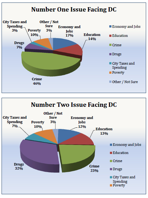 A police union survey asked D.C. residents about their concerns, (Courtesy D.C. Police Union)